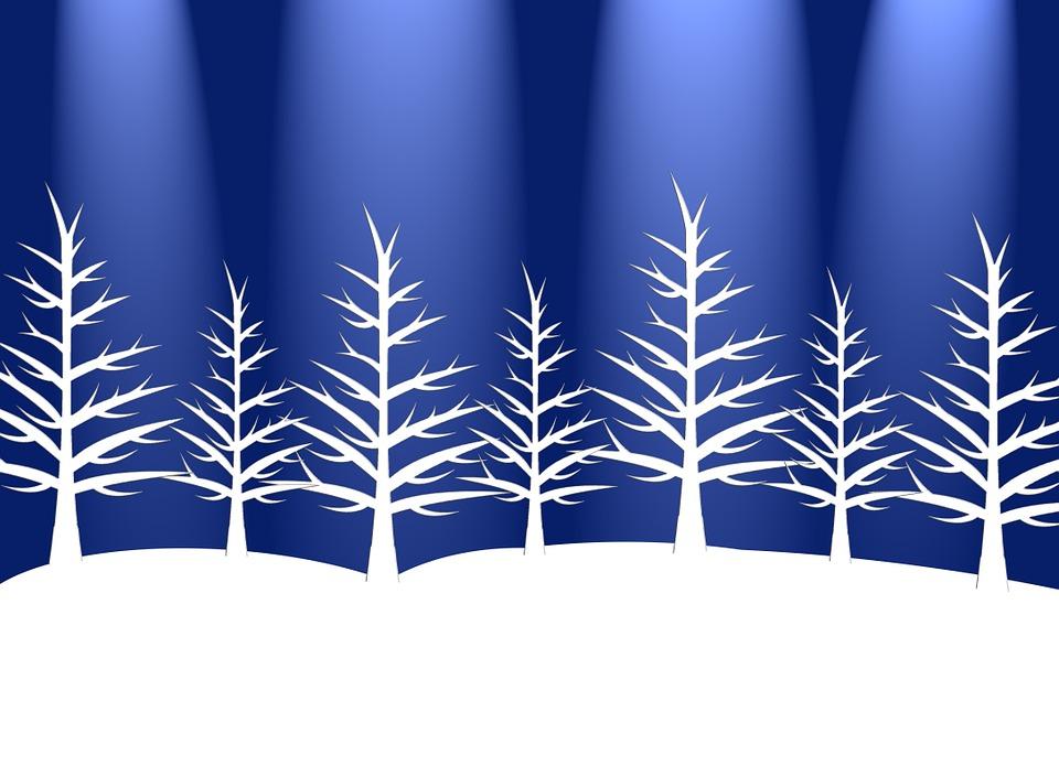 trees winter holiday free image on pixabay