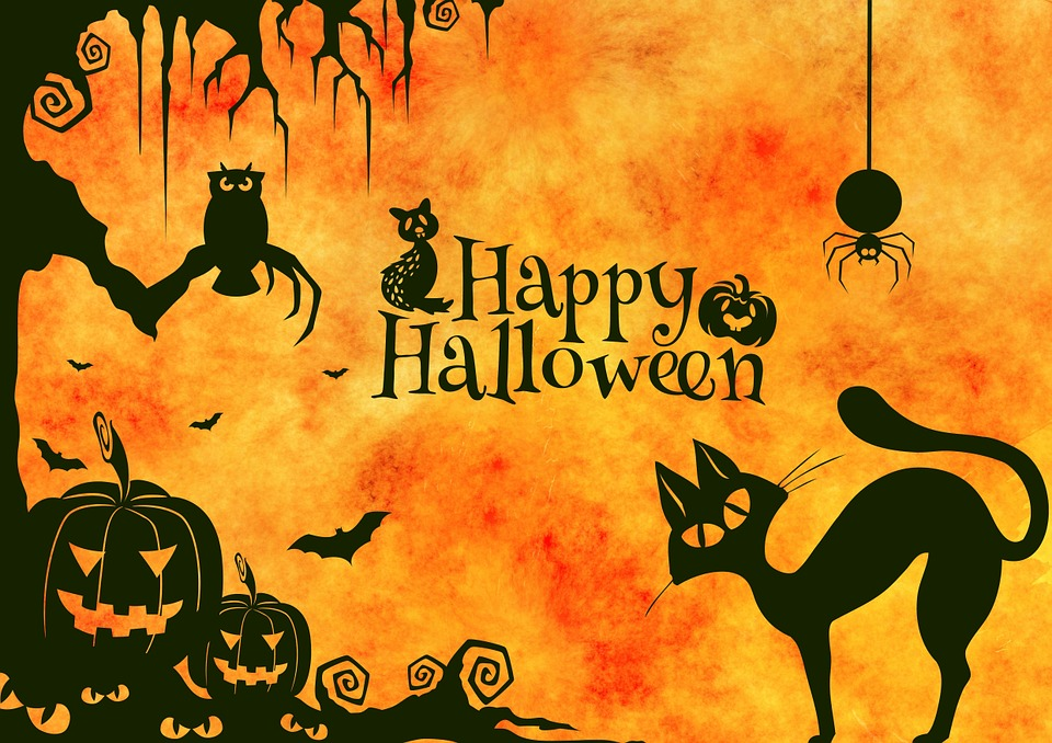 Free illustration: Halloween, Cat, Weird, Surreal - Free Image on ...
