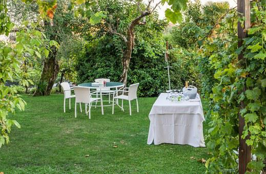 Garden Party, Tables, Nature, Champagne