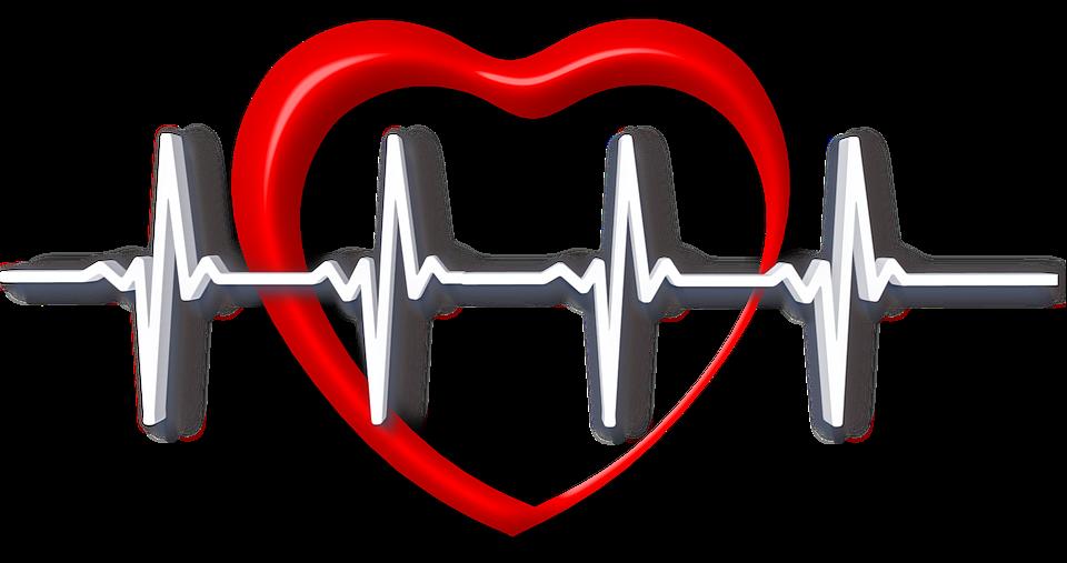 Herz, Gesundheit, Puls, Herzfrequenz, Schutz, Fürsorge