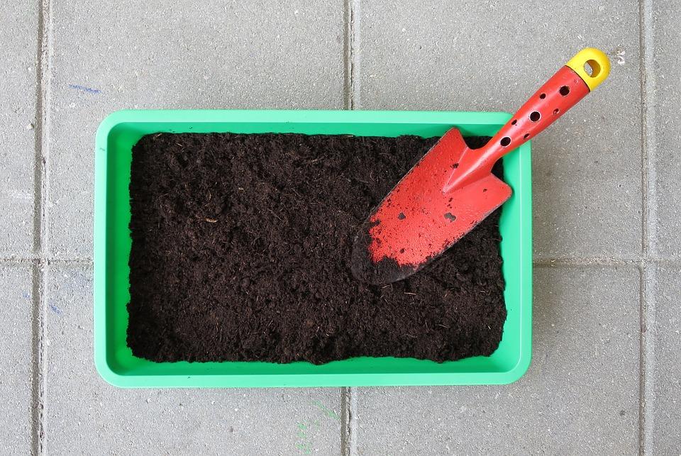 家庭菜園, 庭, ガーデニング, ブルーム, 植物, シャベル, 砂, 成長しています, プロパゲータ