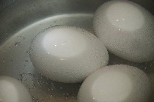 Egg, Brown Eggs, Pot, White, Boil Water