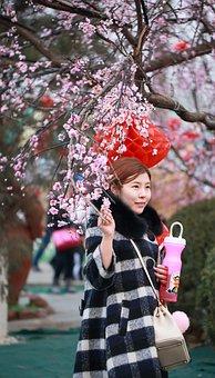 北京, 女の子, 旧正月, 祝祭, 新年, クール, フェア