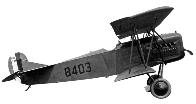 Fokker, Avion, Avion De Combat, Ailes