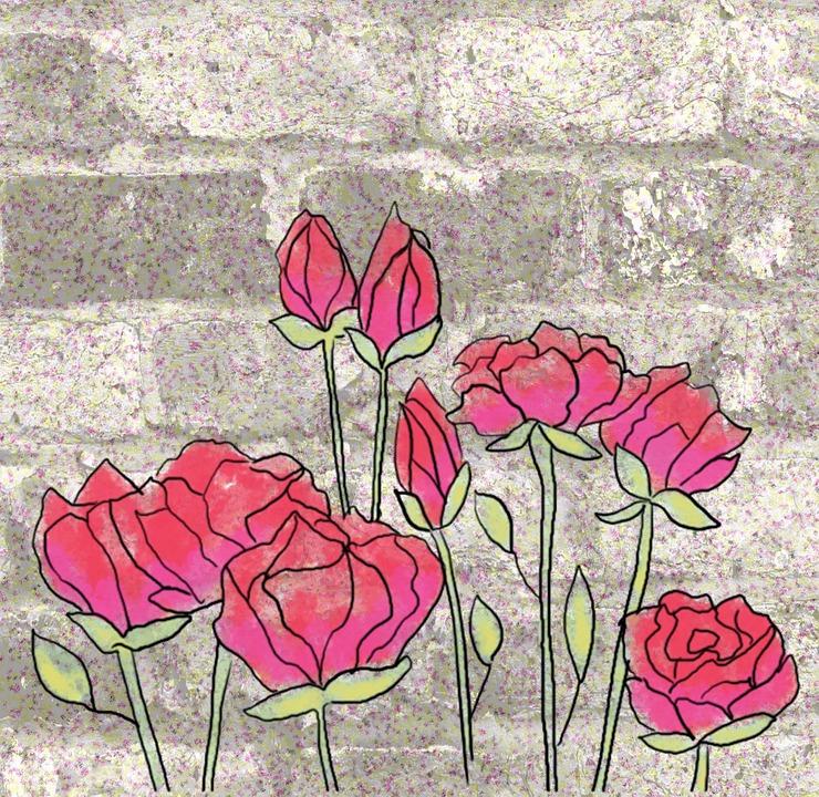 Wall Flowers Roses Free Image On Pixabay