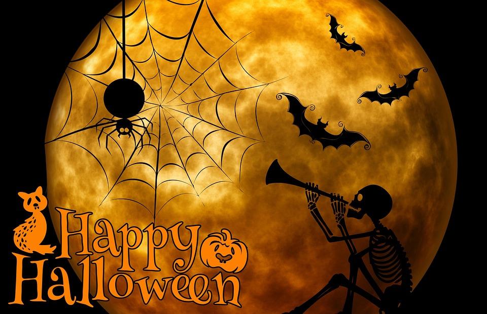 Halloween Skelett Katze · Kostenloses Bild auf Pixabay