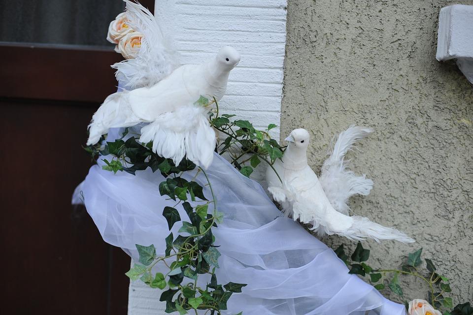 Tauben Hochzeit Gesteck Kostenloses Foto Auf Pixabay