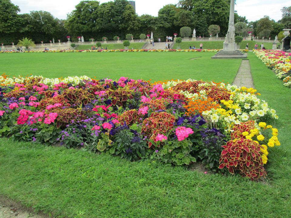 Free photo flower bed flowers park free image on for Grass plants for flower beds