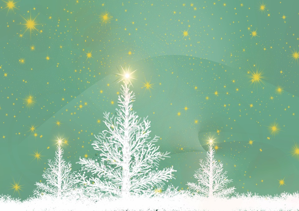 greeting card christmas tree background structure