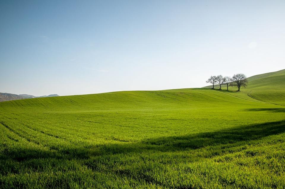 969eb490180e3 hill field sky green blue spring sunset nature