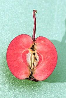 Apfel, Halb, Kerngehäuse, Rot, Obst