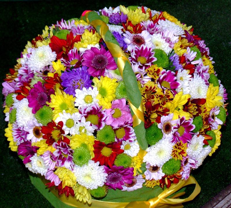 Mazzo Di Fiori Di Primavera.Margherite Fiori Di Primavera Foto Gratis Su Pixabay