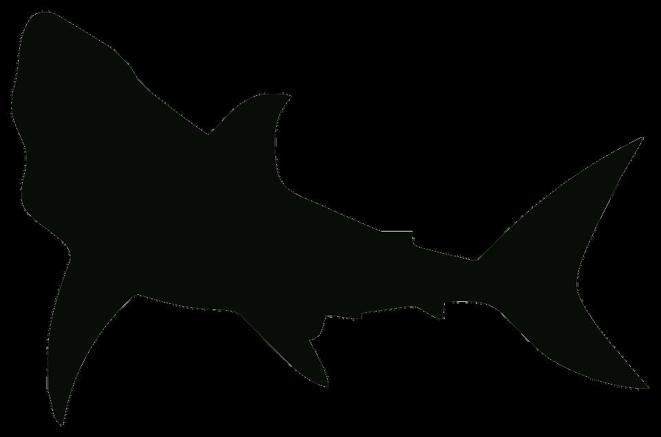 Coloring: marvellous shark outline. Shark Outline Clipart. Shark ...