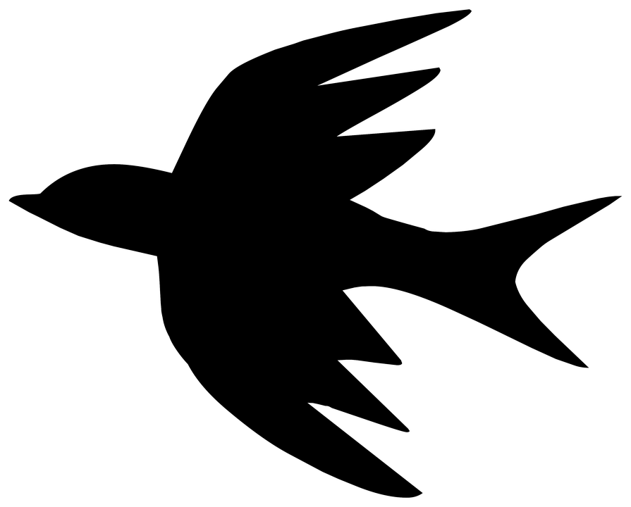 silhouette drawing outline bird spa
