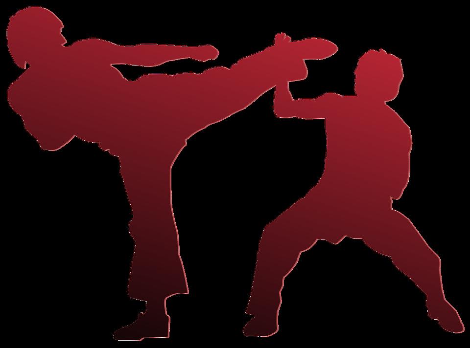 Karate Silhouette Outline Sport 971341