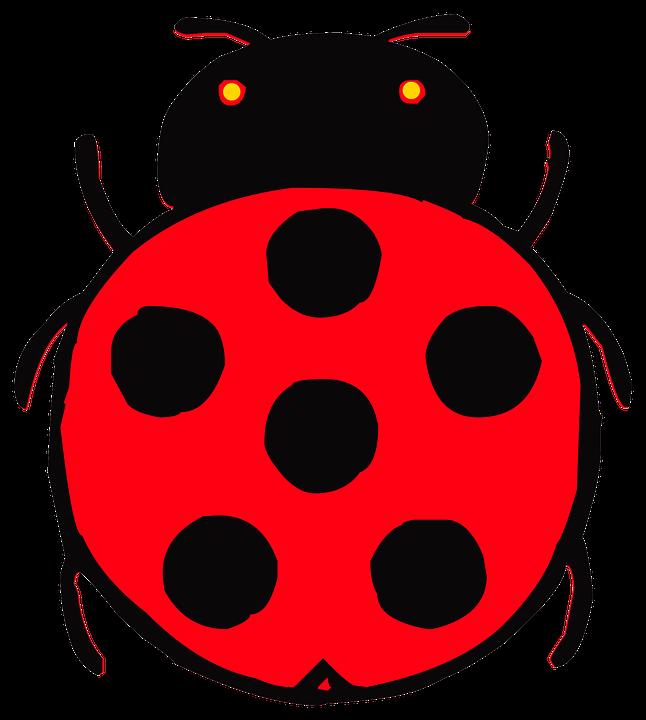 Illustration gratuite coccinelle red insectes dessin - Dessin coccinelle ...