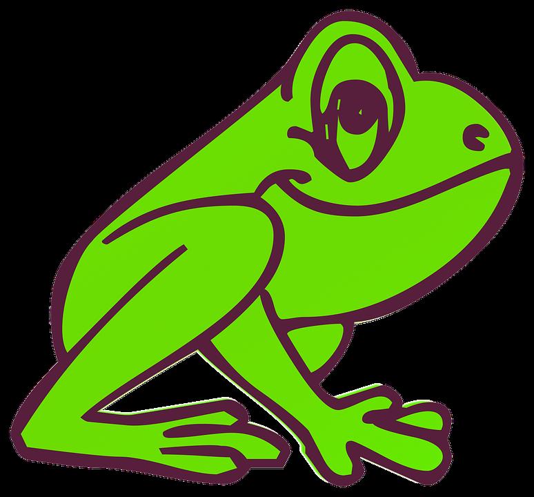 Katak Kartun Ramah Gambar Gratis Di Pixabay