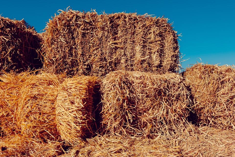 hay farm nature 183 free photo on pixabay