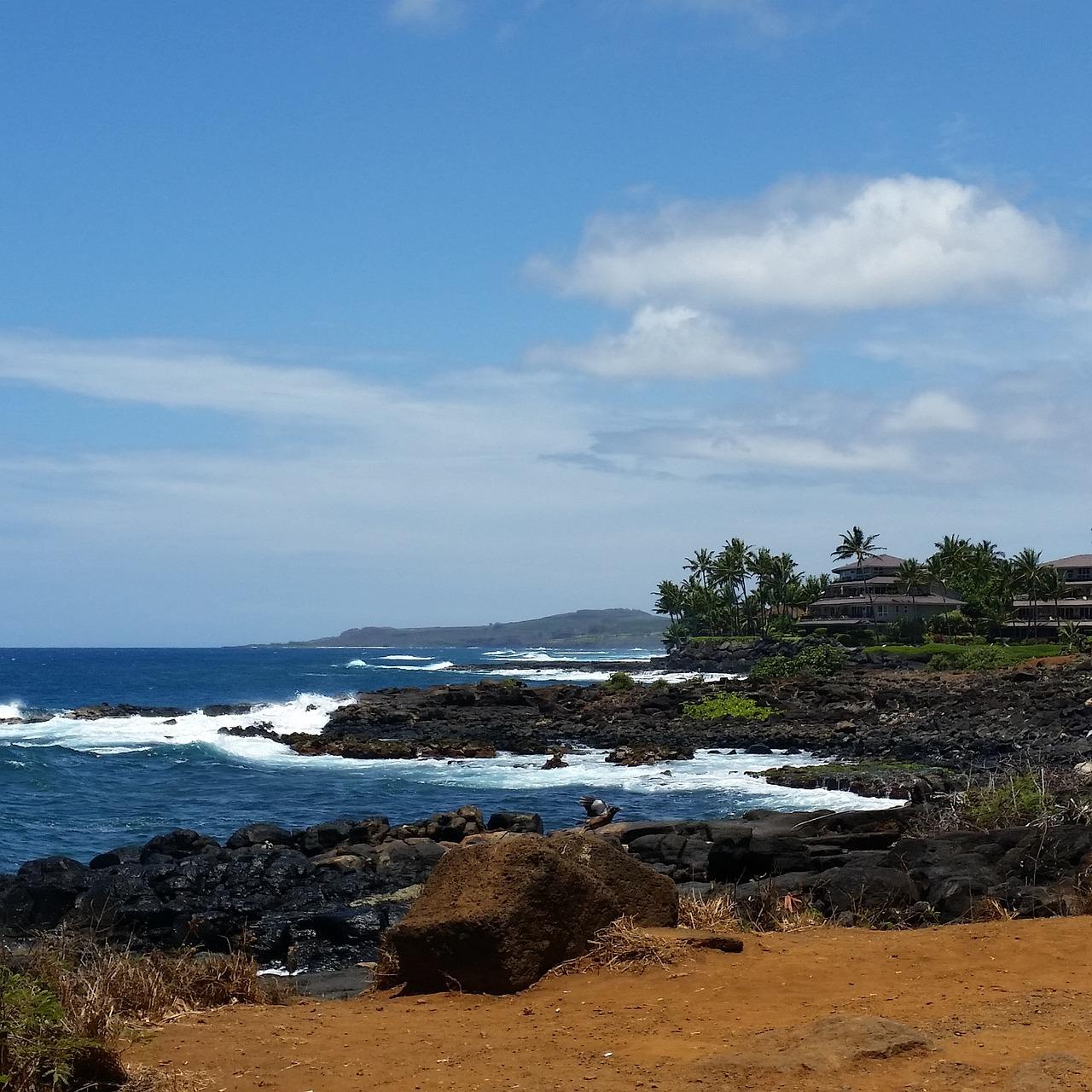 Aloha kauai foto 1 portraits 73