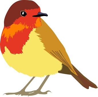 Φιλενάδα παίρνει μεγάλο πουλί