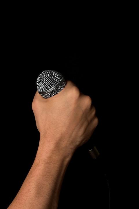 Free Photo Hand, Microphone, Mic, Hold, Fist - Free Image -9407