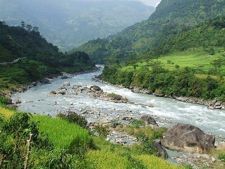 Nepal, Annapurna, Trekking, Forest
