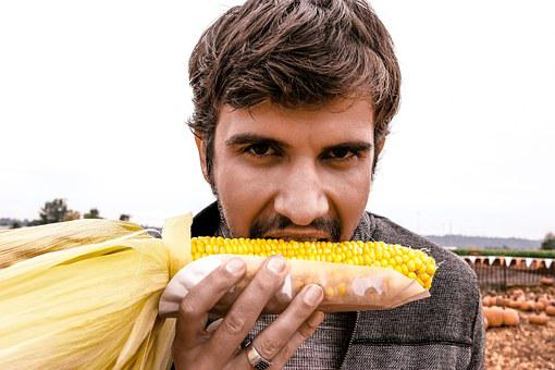 Man, Male, Eating, Corn, Autumn, Fall
