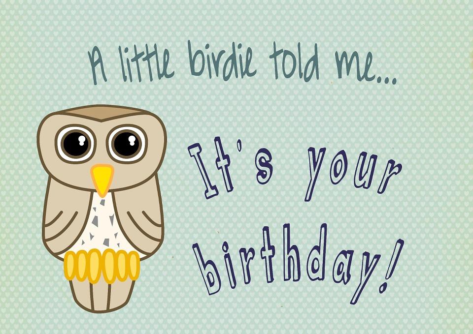 Uil Vogel Verjaardag Gratis Afbeelding Op Pixabay