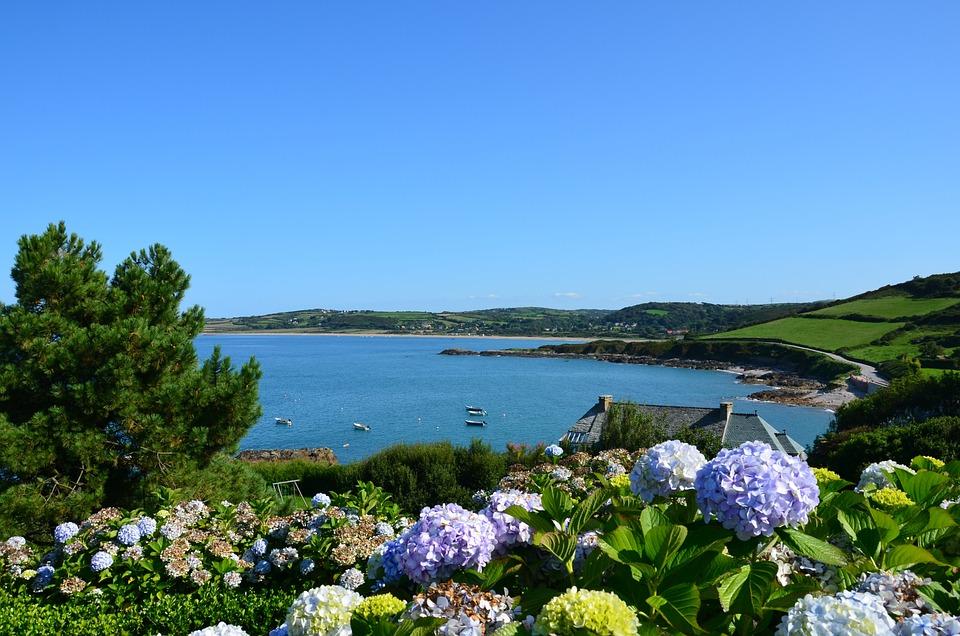 Photo gratuite france cotentin port racine image - Jardin de bord de mer ...