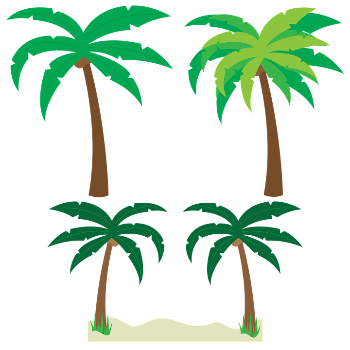 palm trees tree vector free image on pixabay rh pixabay com palm trees vector silhouette vector palm trees black and white