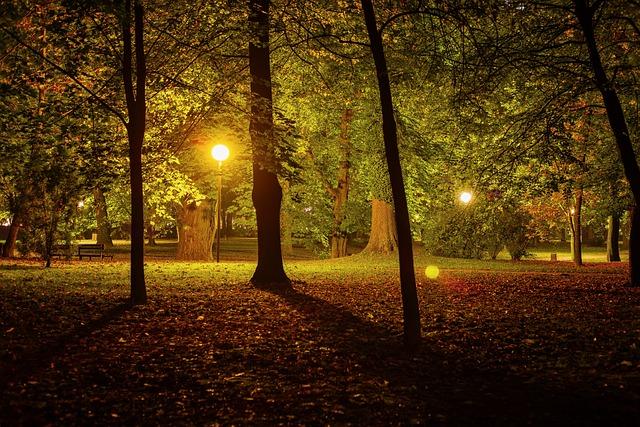 Kostenloses Foto Nacht Park Stadtpark Dunkel