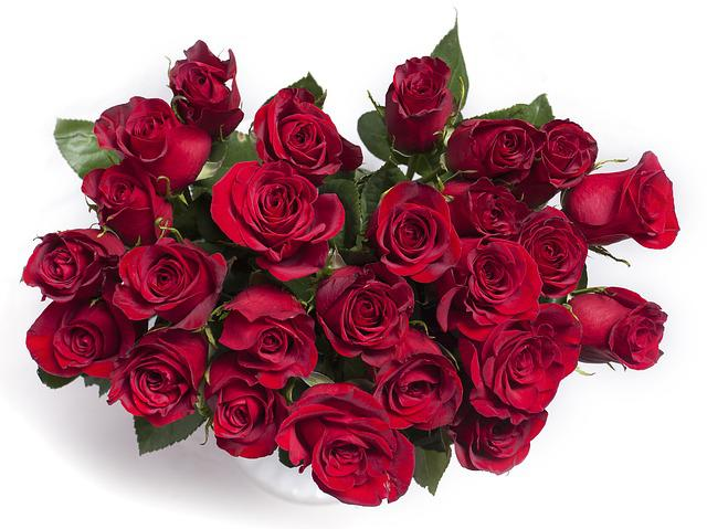 Free Photo: Roses, Red Roses, Red, Bouquet