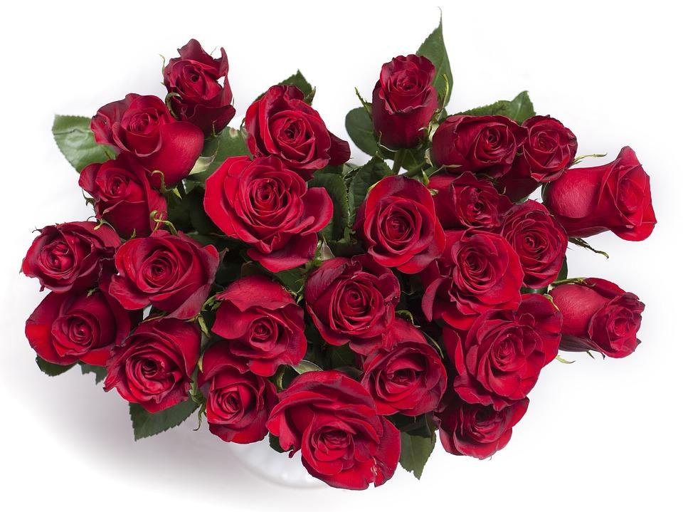 Estremamente Foto gratis: Rose, Rose Rosse, Rosso, Bouquet - Immagine gratis su  NQ84