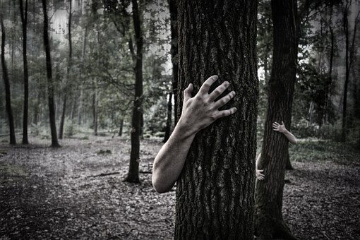 Hands, Trunk, Creepy, Zombies, Forest
