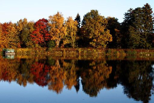 Herbst, Bäume, Spiegelung, Bunt