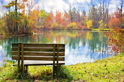 Wood Bench, Pond, Autumn, Fall, Season