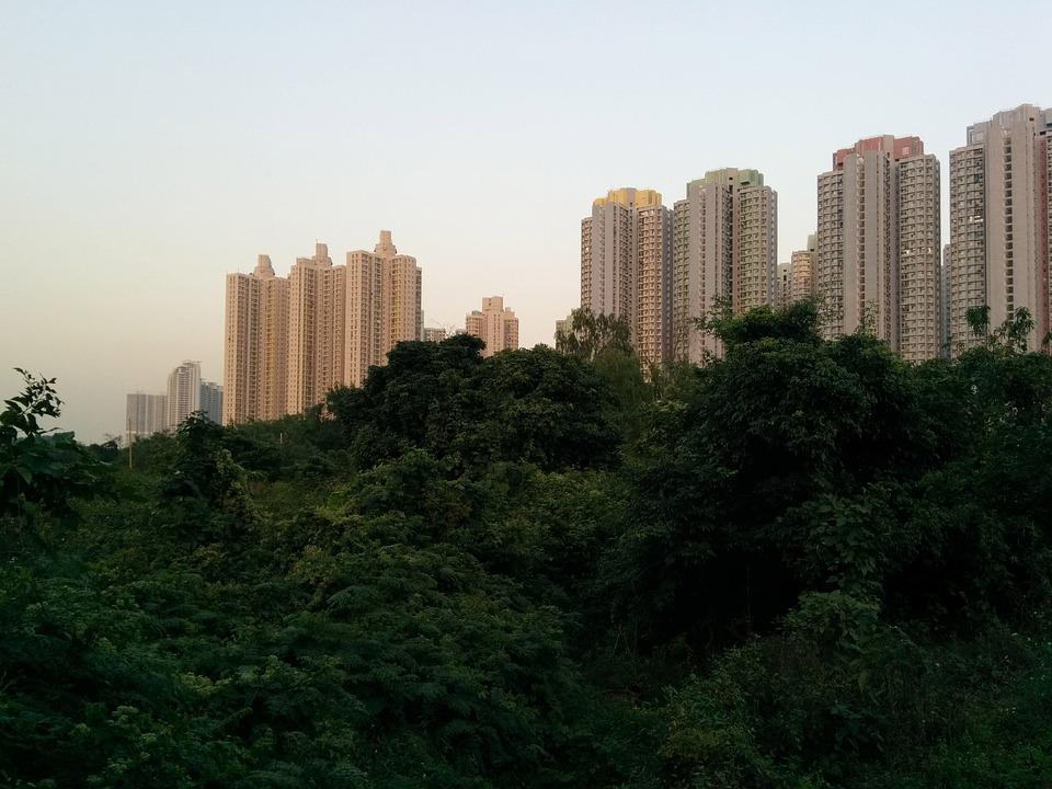 Hochhäuser, Regenwald, Hong-Kong, Stadt, Moderne, Park