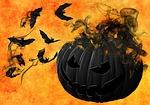 pumpkin, bats, night
