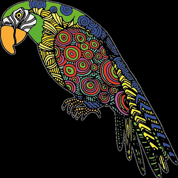 Image vectorielle gratuite perroquet oiseau color dessin image gratuite sur pixabay 990222 - Dessin perruche ...