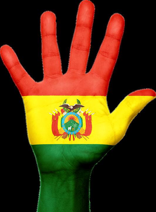 Bolivia Flag Hand 183 Free Image On Pixabay