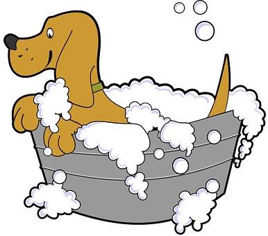 Dog, Bath, Cartoon, Tub, Grooming, Pet