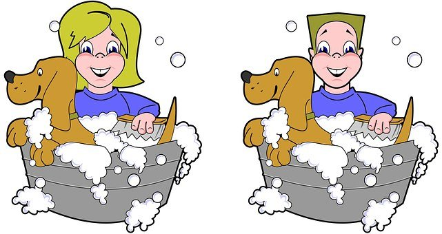 Dog Wash Bath Expression Boy Male Clean Fe
