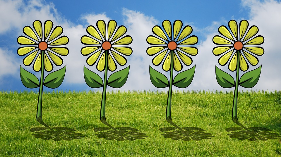 free illustration different, flower bed, flowers  free image on, Natural flower