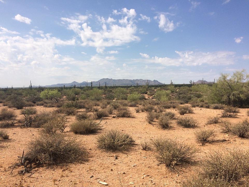 Desert arid dry free photo on pixabay for Desert landscape