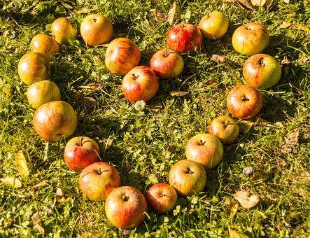 Heart, Apple, Rush, Fruit, Love, Eat