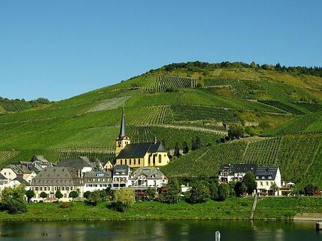 Weinberge, Mosel, Weinanbau, Ortschaft, Camping Kronenburger See
