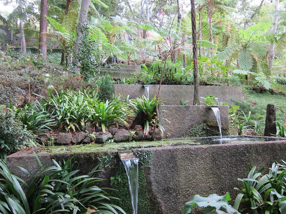 Waterval In Tuin : Waterval tropische tuin natuur gratis foto op pixabay