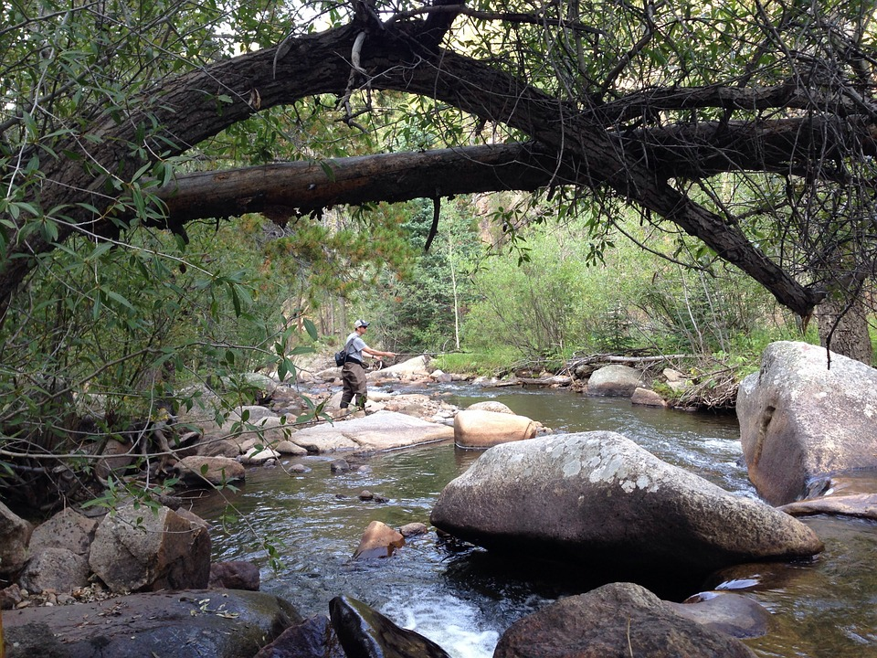 a man standing on a bolder fly fishing in a creek with trees around him