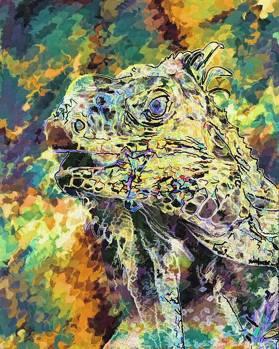 free illustration  lizard  abstract  nature
