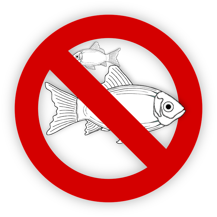Fish, Allergy, Food, No Fishing, Symbol, Icon, Sign